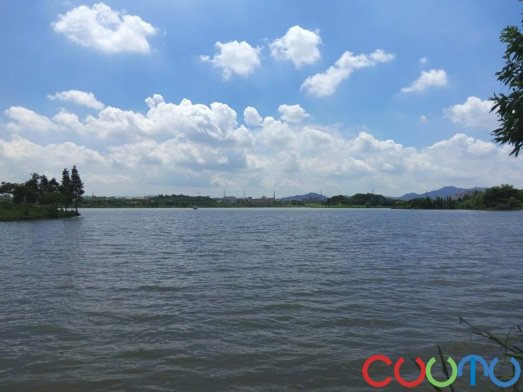 白云湖遥望白云山